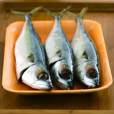 澎湖鯖魚(300g/包/約2~4尾)