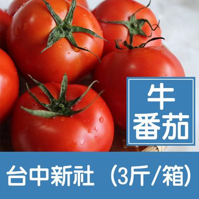 台中新社牛番茄(3斤/箱)