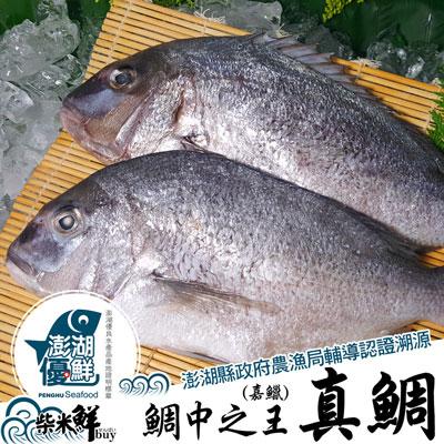 真鯛(嘉鱲)全條魚(700g±10%/尾)