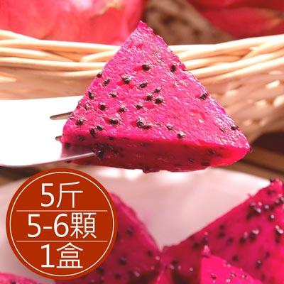 屏東紅肉火龍果出口等級5-6顆裝(5斤±5%盒)