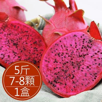 屏東紅肉火龍果出口等級7-8顆裝(5斤±5%/盒)