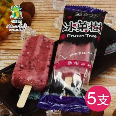 桑椹冰棒(85g*5支/袋)