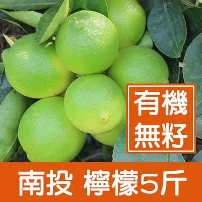 一籃子南投有機無籽檸檬(5斤/箱)