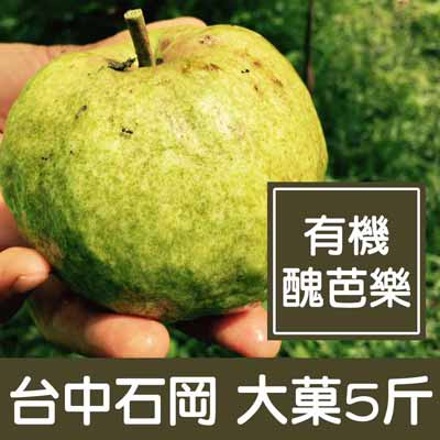 台中石岡有機醜芭樂(大菓5斤/箱)