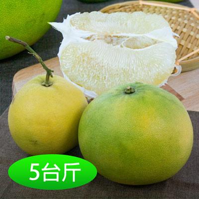 月圓柚園吉園圃台南40年老欉大白柚5台斤(2顆)