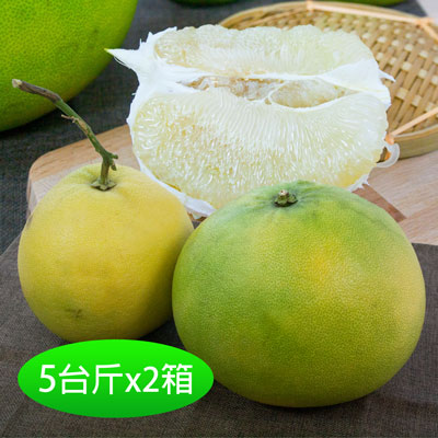 月圓柚園吉園圃台南40年老欉大白柚5台斤(2顆)2箱