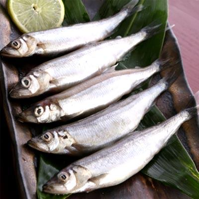 鮮之流加拿大爆卵柳葉魚(250g±20g/盒)
