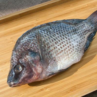 台灣鯛魚(500g±10%/包)