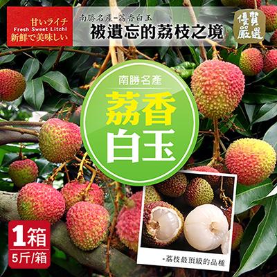 預購-南勝名產荔香白玉,玉荷包荔枝(5斤/箱)