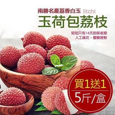 預購-南勝名產荔香白玉,玉荷包荔枝2箱(5斤/箱)