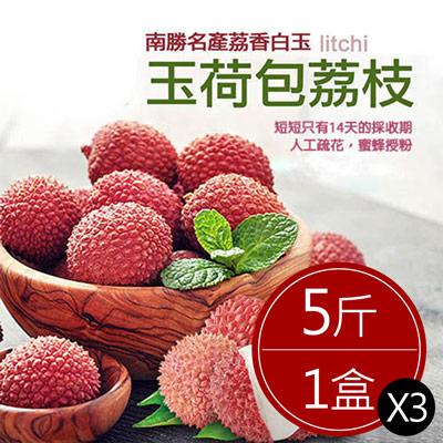 預購-南勝名產荔香白玉,玉荷包荔枝3箱(5斤/箱)