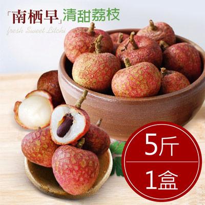 預購-清甜南栖早荔枝(5斤/箱)