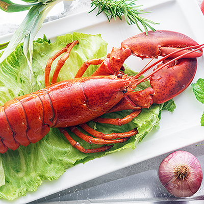 鮮甜波士頓龍蝦(熟)(480g±10%/隻)