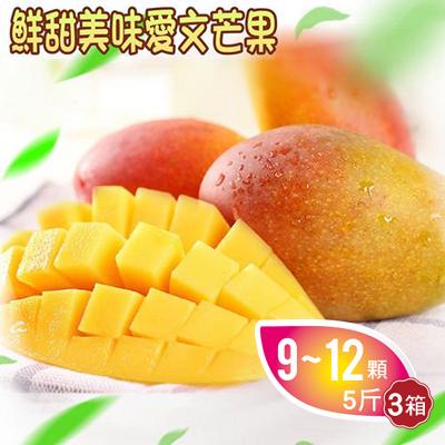 枋寮愛文芒果5斤(9-12顆)*3箱