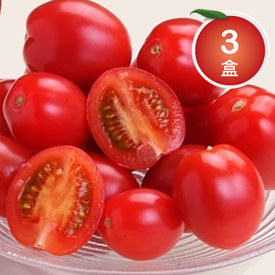 苗栗頂級溫室蜜聖女蕃茄*3盒