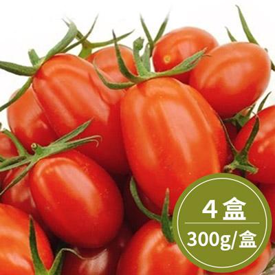 南投頂級蜜3小玉女蕃茄*4盒