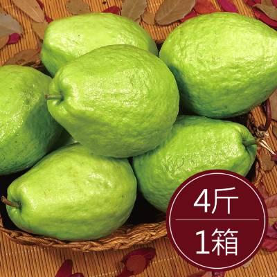 彰化溪州珍珠芭樂(4斤)