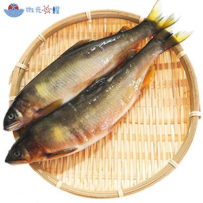 黃金爆卵母香魚(1kg±5%/盒)
