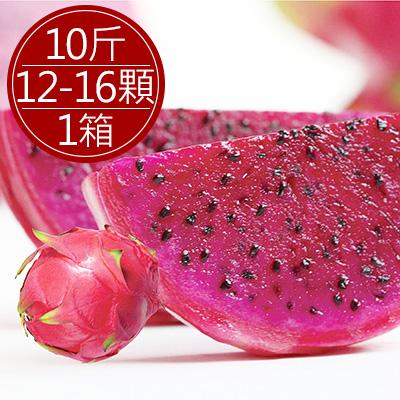 集集紅肉火龍果10斤(10-15顆)