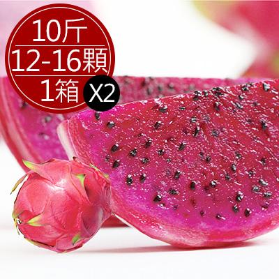 集集紅肉火龍果10斤(10-15顆)*2箱