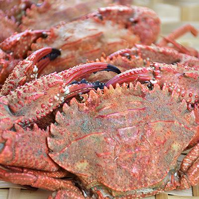 澎湖秋石蟹(熟)(600~650g±5%/包)