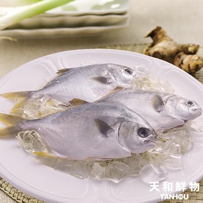 澎湖小金鯧(300g±5%/包)