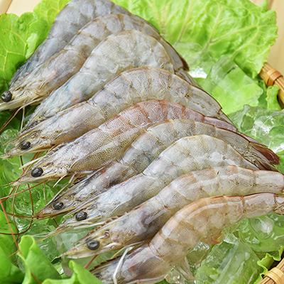 台灣活凍白蝦(250g±10%/盒)