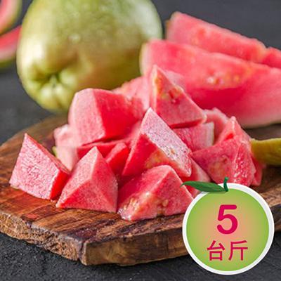彰化溪洲草生栽培-紅心芭樂5斤
