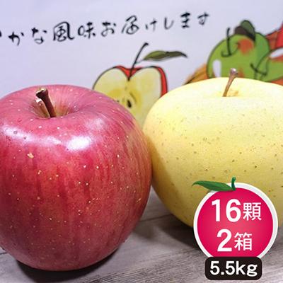 日本青森金星蘋果+陽光富士蜜蘋果禮盒16顆*2箱