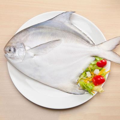 野生印度洋正白鯧魚(500g±10%/包)