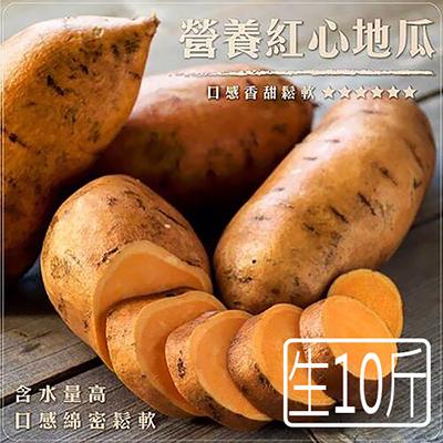 台農66號紅生地瓜10斤