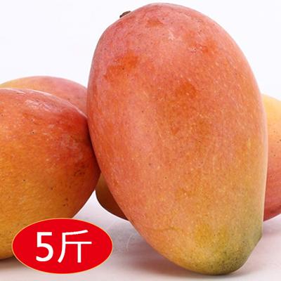 紅龍水蜜桃芒果5斤(大粒)