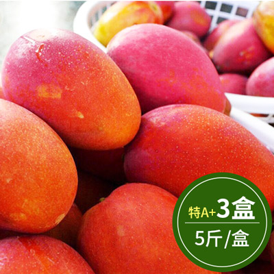 外銷日本特A+級-枋山廣伯愛文芒果(5斤)*3盒
