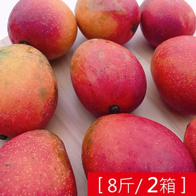 枋山產地直送-香甜愛文芒果(8斤)*2箱
