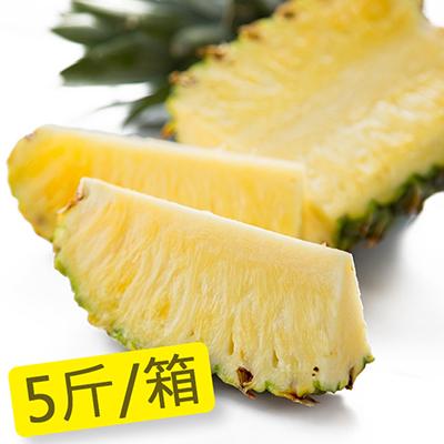 屏東迷你金鑽牛奶甜蜜鳳梨(5斤/箱)
