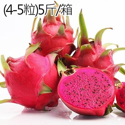 台灣高山紅肉火龍果(4-5粒)5斤/箱