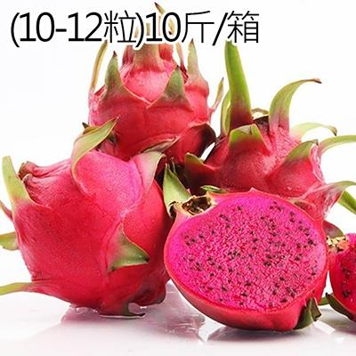 台灣高山紅肉火龍果(10-12粒)10斤/箱