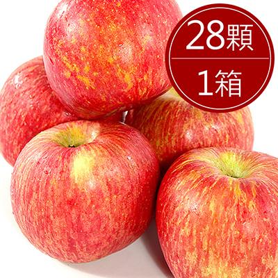 智利富士蘋果(28顆/原箱裝)