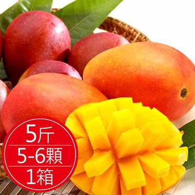 套袋自然熟成慢文芒果5斤(約5-6顆)