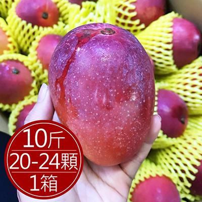 外銷日本A+愛文芒果10斤(20-24入)/箱