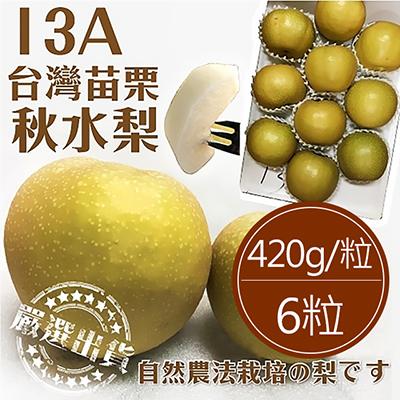 嚴選苗栗大粒秋水梨(13A)6粒