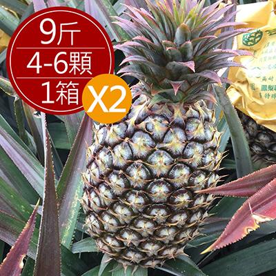 黃金爆汁金鑽17鳳梨(9斤)*2箱
