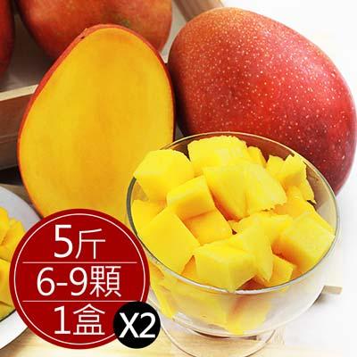 台南愛文芒果(5斤裝(6-8粒),共2盒)