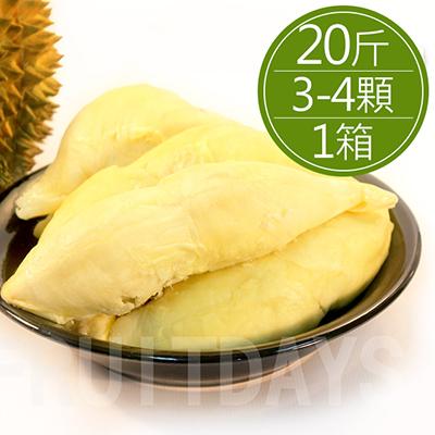 水果之王金枕頭榴槤20斤重(約3~4顆)/箱