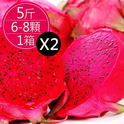 集集紅肉火龍果(5斤(6-8顆)*2箱)