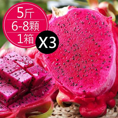 集集紅肉火龍果(5斤(6-8顆)*3箱)