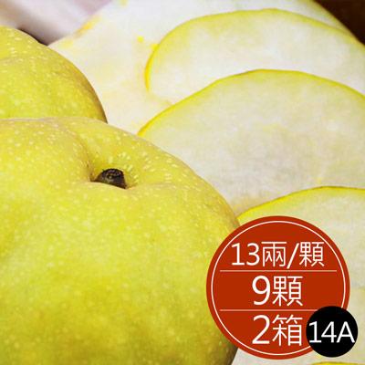 苗栗新興水梨14A(13兩±5%*9顆/箱)*2箱