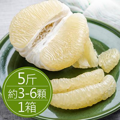 50年鶴岡文旦(5斤)*1箱
