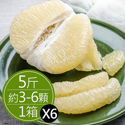 50年鶴岡文旦(5斤)*6箱