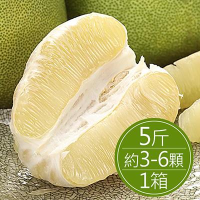 30年麻豆文旦(5斤)*1箱